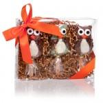 Owl Crispy Characters- Set of 3